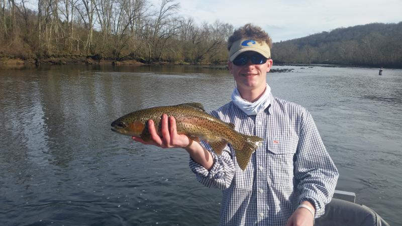 Trophy Class Rainbow Trout On the Clinch River in Tennessee