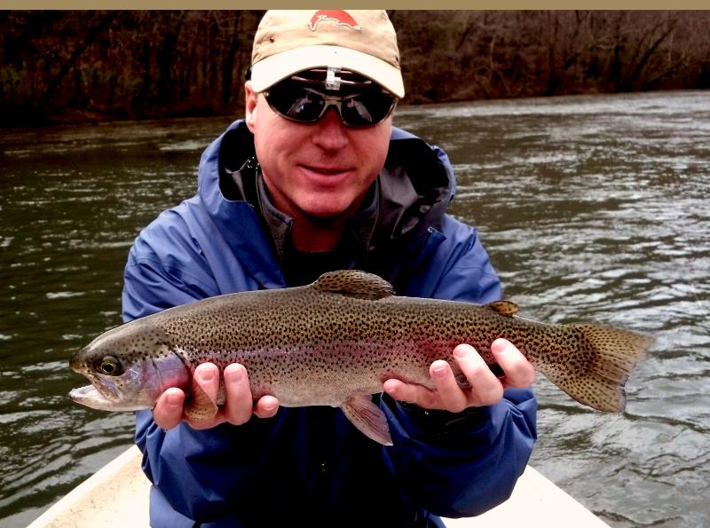 Beautiful Hiwassee River Rainbow Trout caught fly fishing,