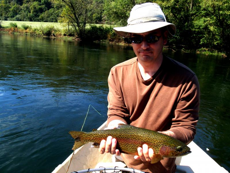 Tennessee has wonderful trophy trout tailwaters and very healthy fish trout. fly