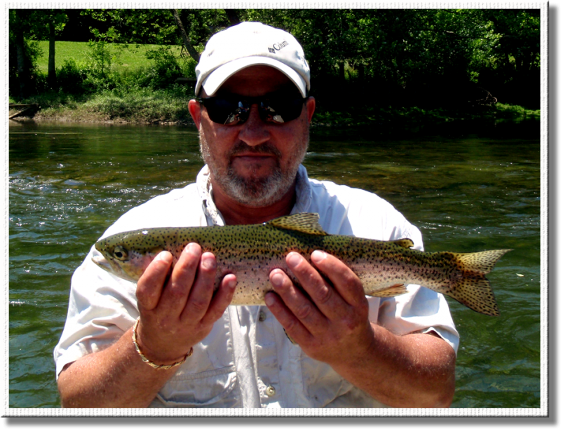 Clinch River Rainbow Trout caught with Rocky Cox