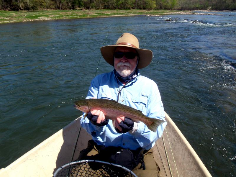 Trophy rainbow trout caught fly fishing from a driftboat near Knoxville TN