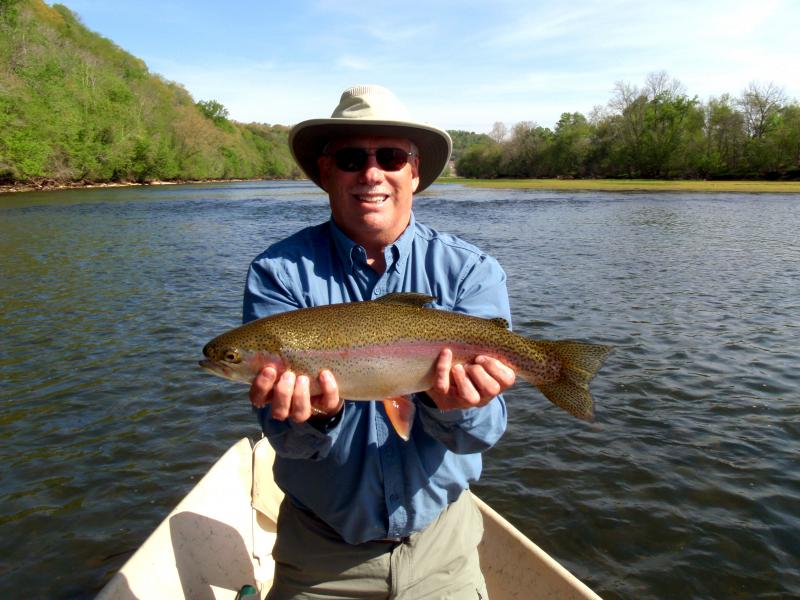 Trophy rainbow trout. guided driftboat outfitter in Knoxville