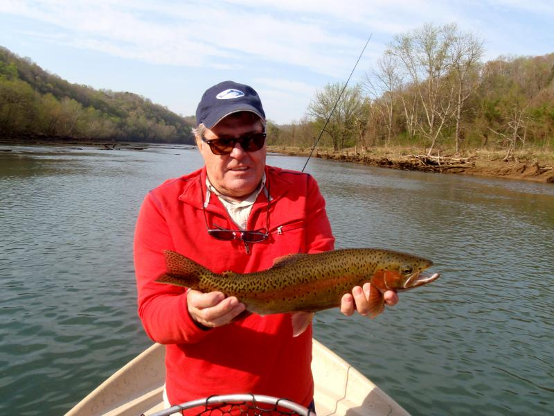 Trophy rainbow trout fishing on quality trout tailwaters with guide Rocky Cox
