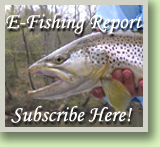 Rocky Top Anglers E Fishing Report Subscription