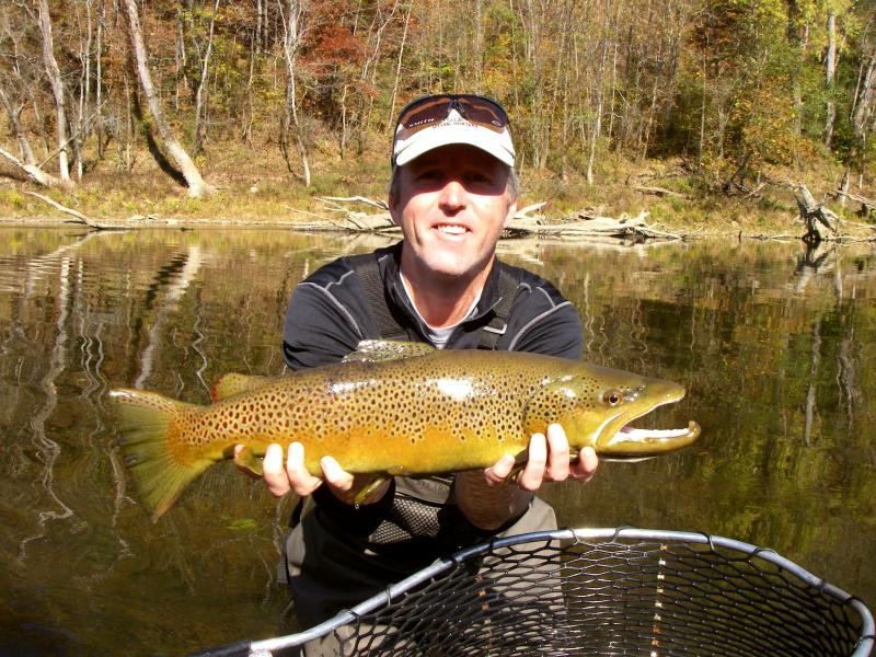 Trophy Brown Trout Kentucky Cumberland River Fishing Guide