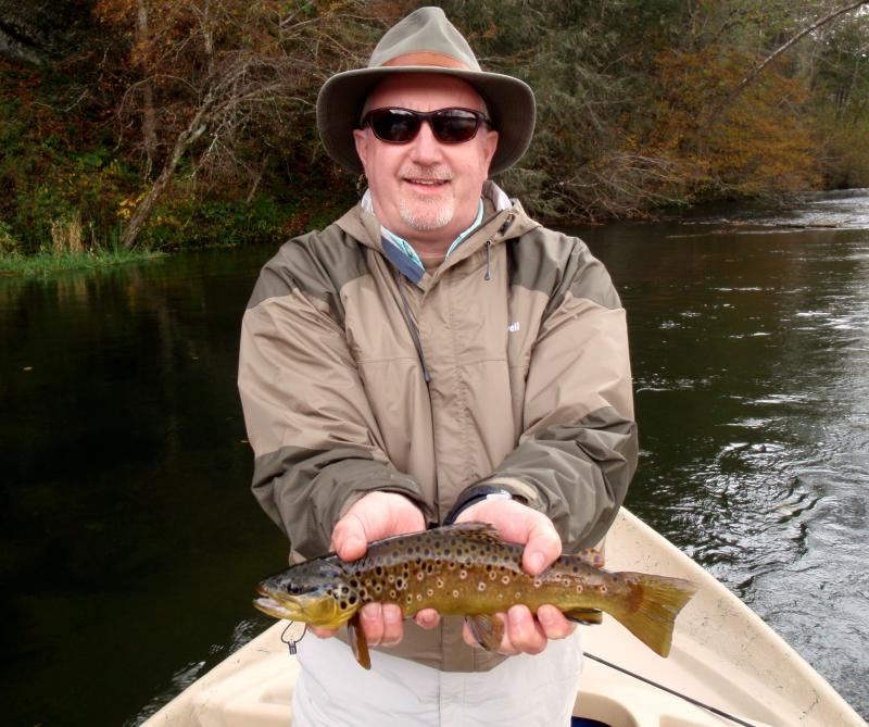 Gorgeous wild brown trout from the South Holston River