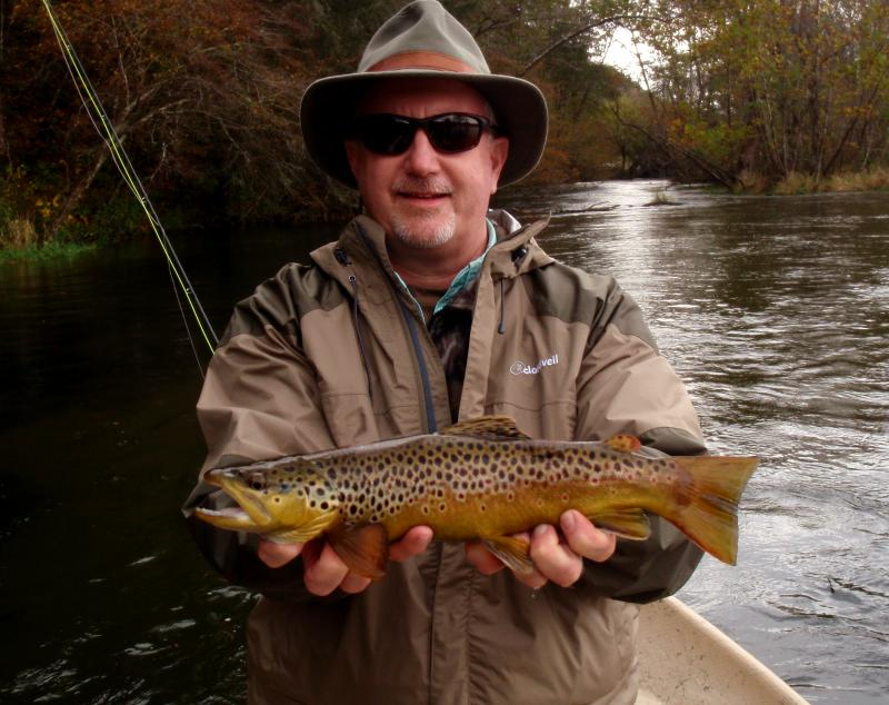 South Holston Brown Trout with Rocky Top Anglers