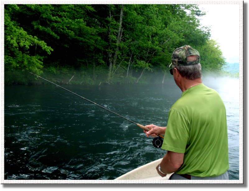 Dry fly fishing after the rain on the South Holston