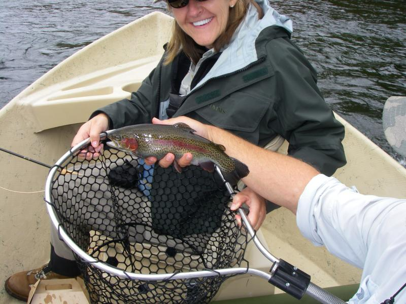 Tennessee Guided Trout Fishing