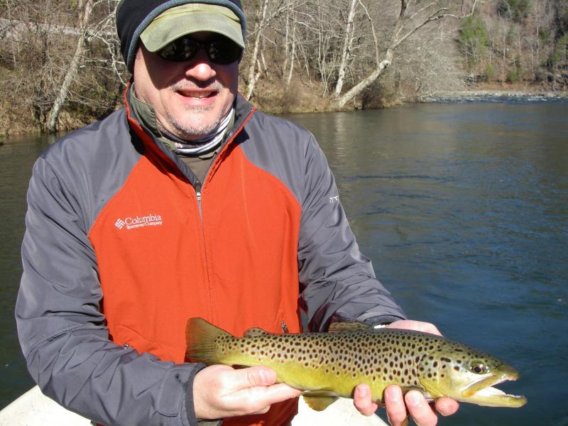 Shad Kill Brown Trout caught fly fishing