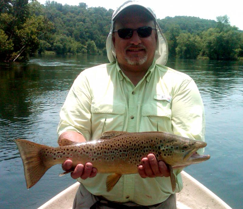 Clinch River Brown Trout Guided Fly Fishing With Rocky Top Anglers