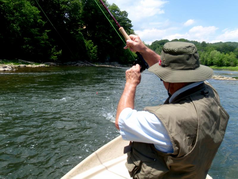 Hard fighting rainbow trout on the Holston River with Tennessee Outfitter guide