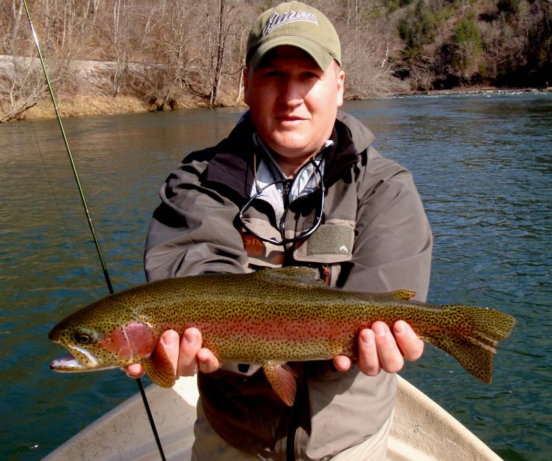 Beautiful rainbow trout from the Hiwassee River Delayed Harvest with Rocky Cox