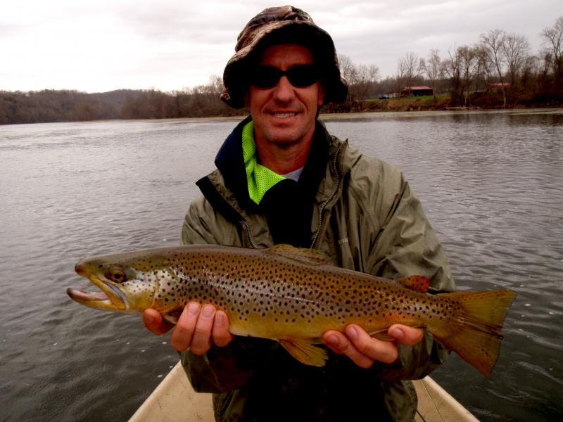 Trophy brown trout in Tennessee with fly fishing guide Rocky Top anglers
