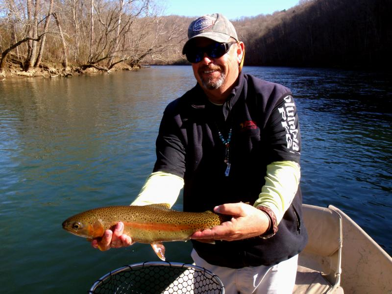 Clinch River tailwater trophy rainbow trout with knoxville fly fishing guide