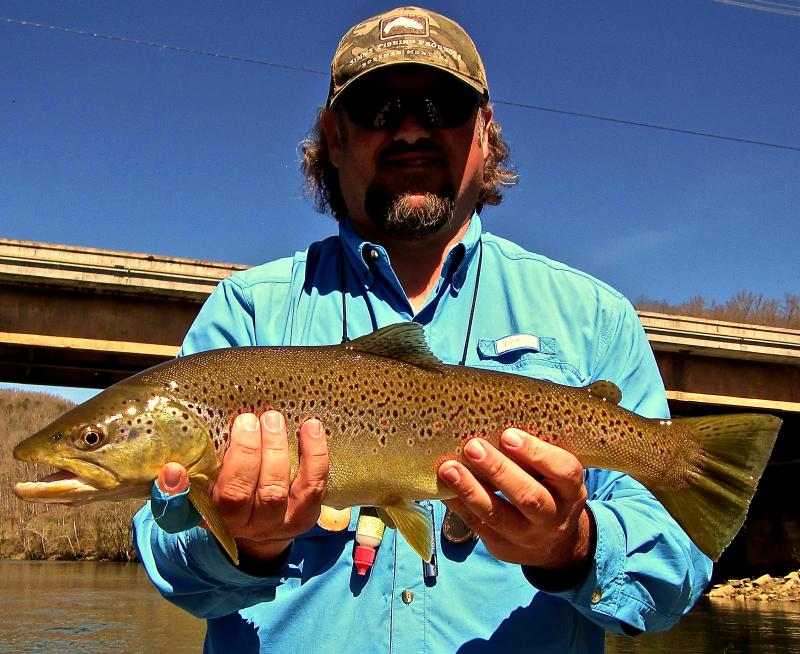 Trophy Brown Trout caught in Tennessee with Guide Rocky Cox