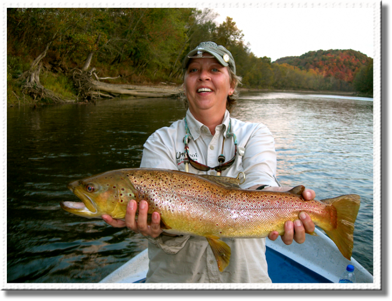 Trophy Brown Trout caught with the Fly Fishing Guides of Rocky Top Anglers