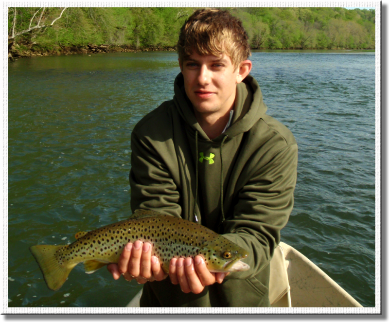 Fly fishermen catches chunky Holston brown trout with Rocky Top Anglers