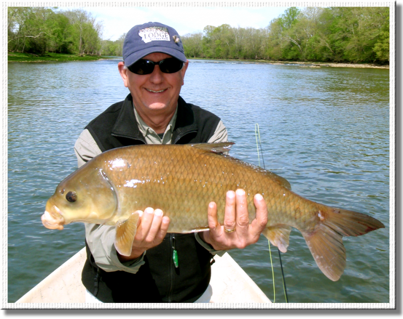 Famous RTA client V.Plumb lands this monster on 5x tippet.