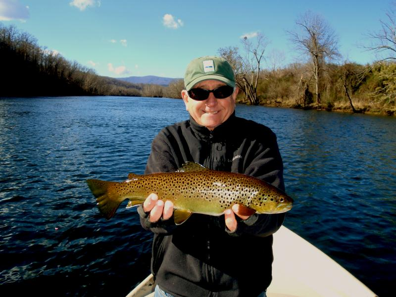 Trophy brown trout fly fishing in Tennessee on the Clinch River