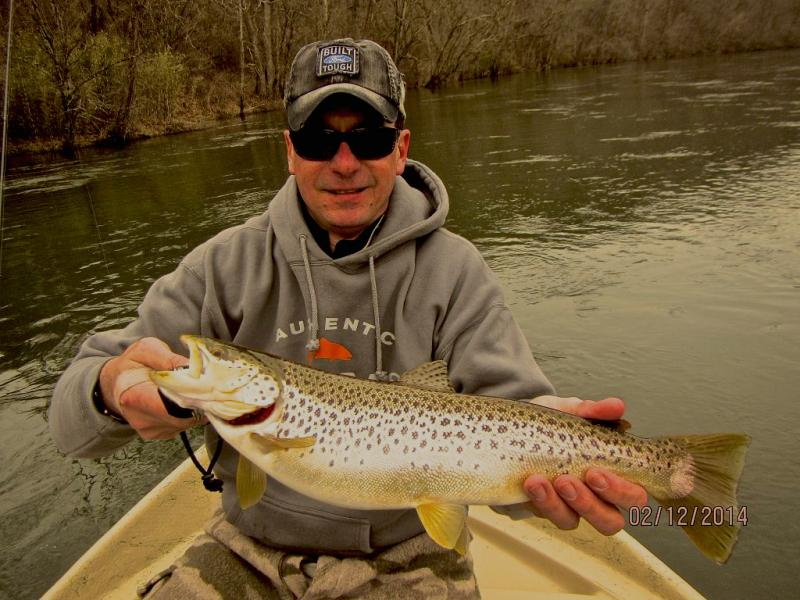 Clinch River brown trout, east tennessee drift boat fly fishing guide outfitters