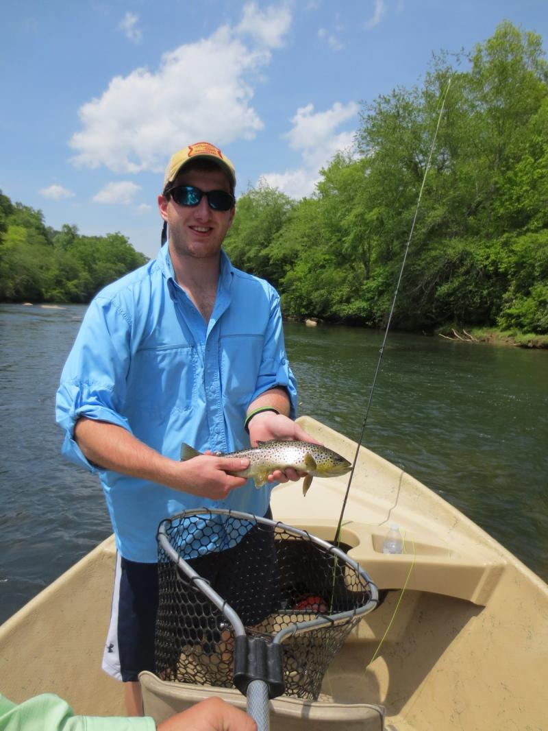 Toccoa River Brow Trout Caught on Fly Fishing Rod